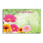 Enclosure gift card Get Well Soon Daisies