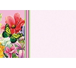 Enclosure gift card Butterfly & Flowers